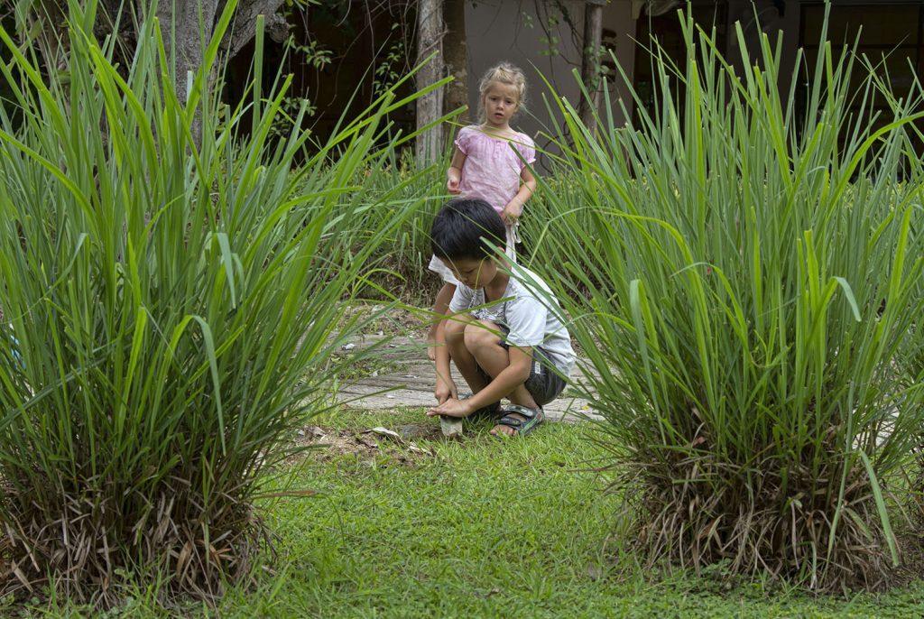 Chiang Mai Montessori School garden